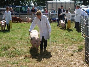 Mandy with Tessie at Rydale Show