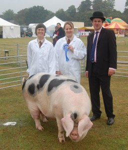 Reserve Best In show went to Oaklands Pigs.  Clare Wilson and helper Jo Tucker with the judge