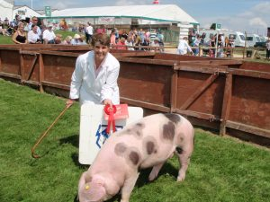 Marlene Renshaw with Dockenbush Star 59 - the January gilt winner
